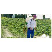 В Канаде некоторые инсектициды могут быть запрещены для применения сельхозприменения
