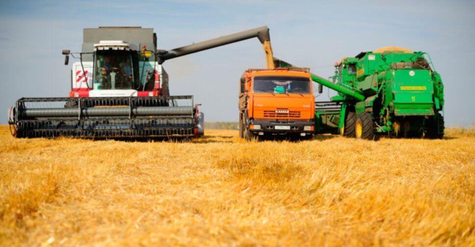 Аналитика зернового рынка России от компании Foss