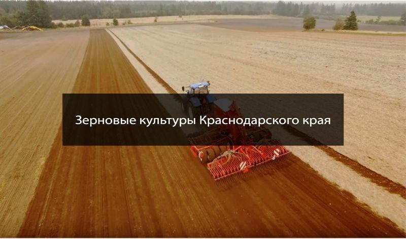 zerocentr.ru